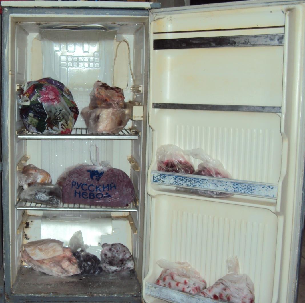 Как из холодильника сделать морозильную камеру