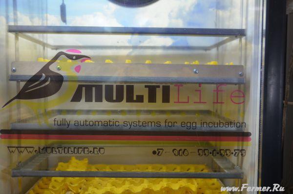 Выводной инкубатор MultiLife-600.