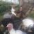 Аватар пользователя oksana kashapowa