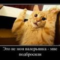 Аватар пользователя Андрей Ефанов