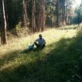 Аватар пользователя Евгений Одинцов 1