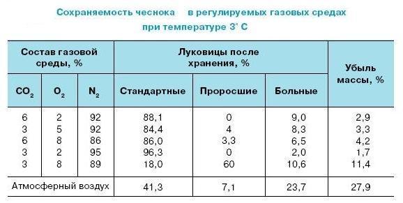 gazovaya_sreda.jpg