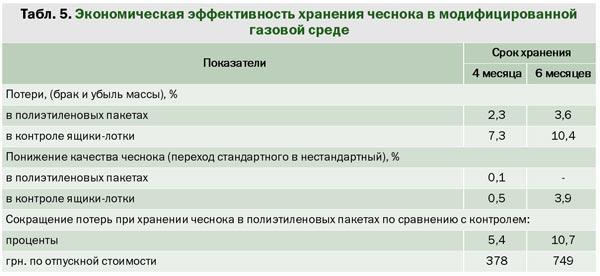 gazovaya_sreda_2.jpg