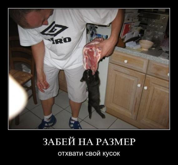 1321712463_demotivator-0062.jpg