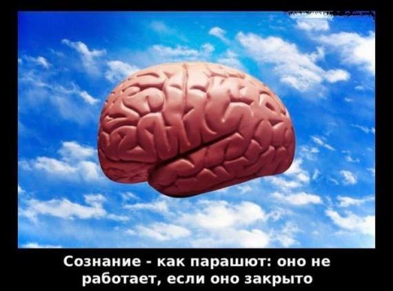 1323032513_gvozdey_frazi_08.jpg
