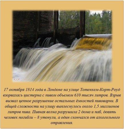 1331367253_fakti_06.jpg