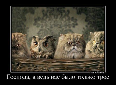 1333010967_81125756_gospoda-a-ved-nas-byilo-tolko-troe.jpg