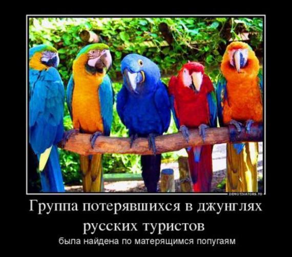 1354185878_1354089447_1353774979_35im_resize.jpg