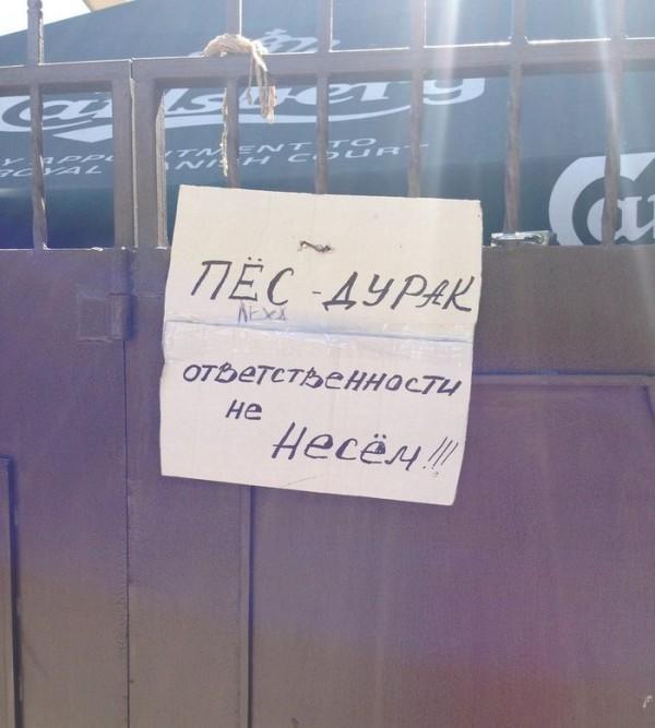 1379007274_raznoobraznaya-podborka_4-78.jpeg