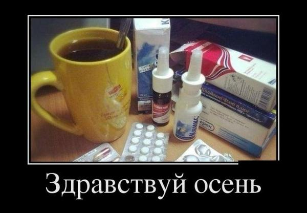 1380648464_demotivatry_27_1.jpg