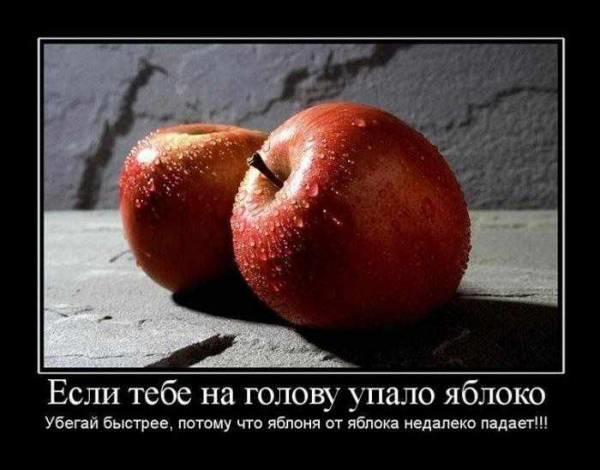 14jpg_8168006_5597866.jpg