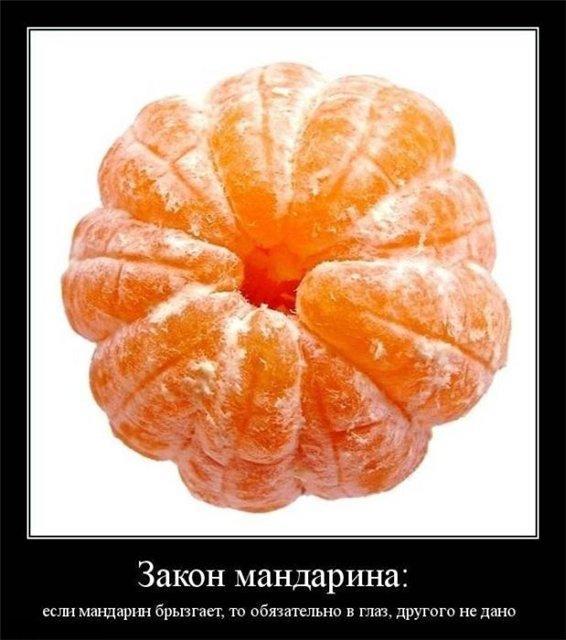 debf01bc56a3.jpg