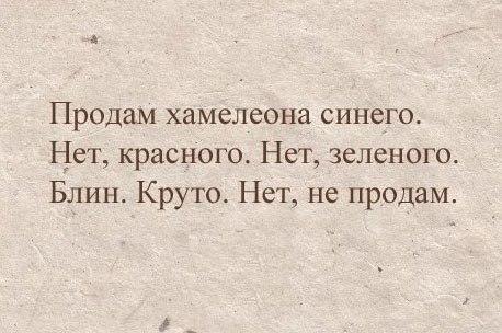 eho_deced2k1.jpg