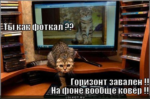 gorizont-zavalen_1319768670.jpg