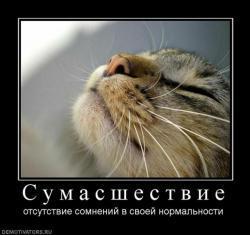 image885.jpg