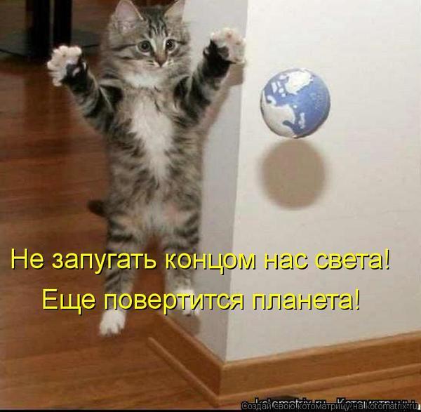 kotomatritsa_la1.jpg