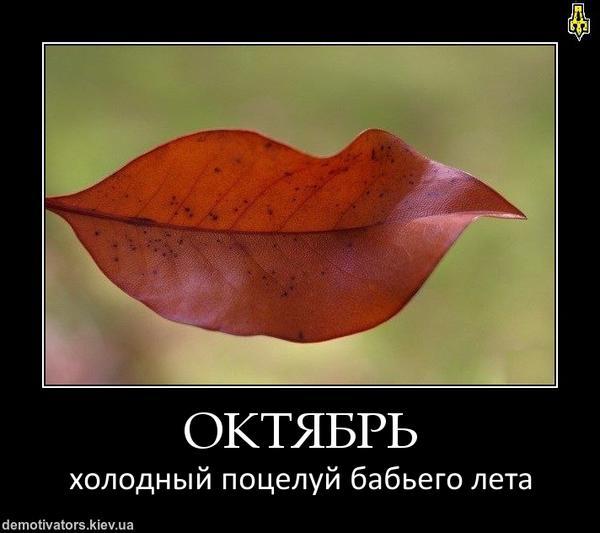 oktyabrjpe_3484308_6070471.jpg