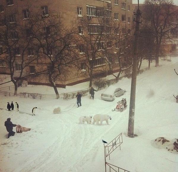 ulica_v_snegu.jpg