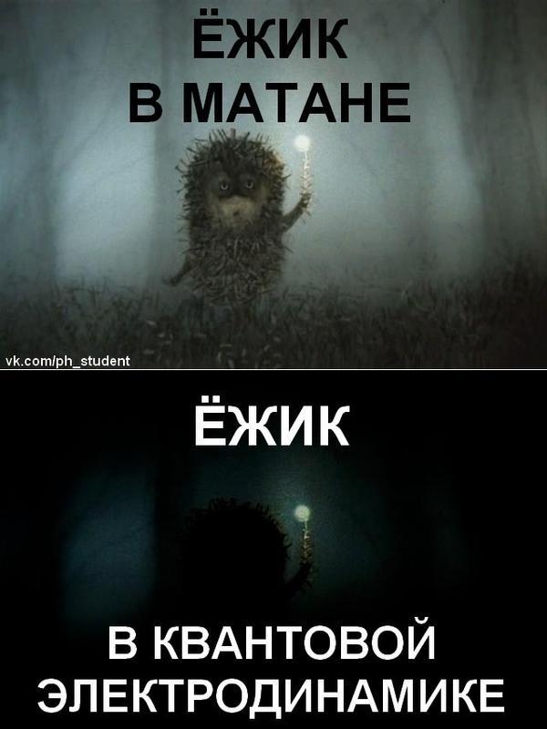 yozhik.jpeg