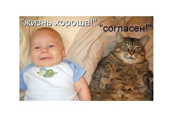 zhizn_horosha.jpg