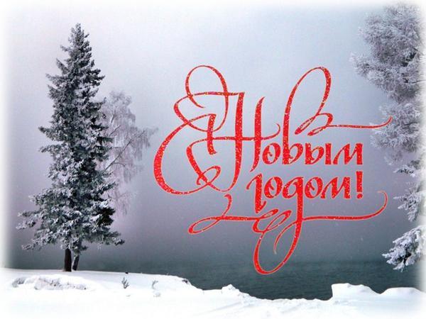 s_novym_godom.jpg