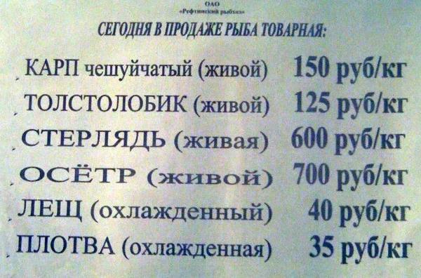 ryba_tovarnaya.jpg