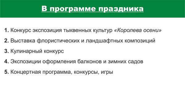 flaer_oborot_cpkio2.jpg