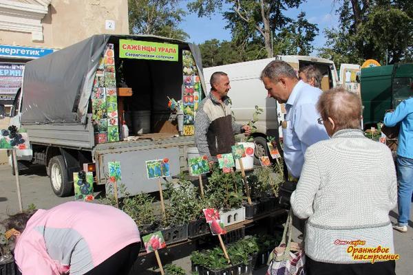 i_ne_tolko_vinograd.jpg