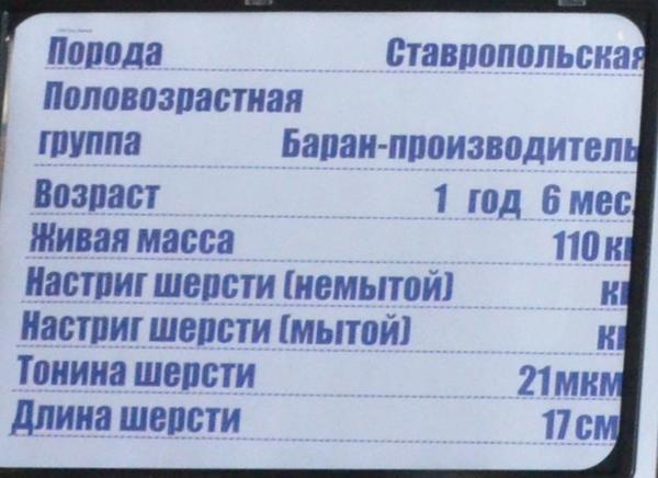 put_lenina4.jpg