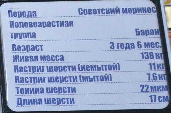 spk_lenina2.jpg