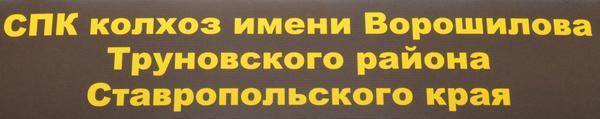 voroshilova1.jpg