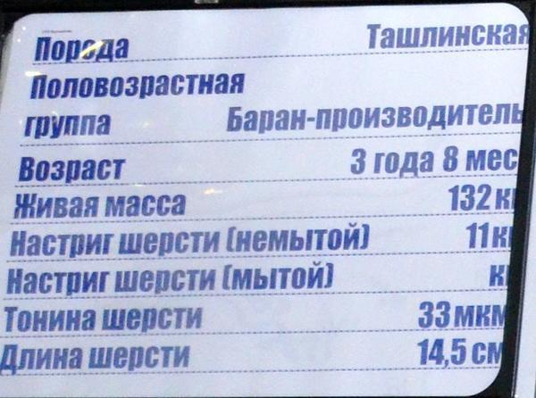 voroshilova2.jpg