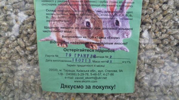 izobrazhenie_245.jpg