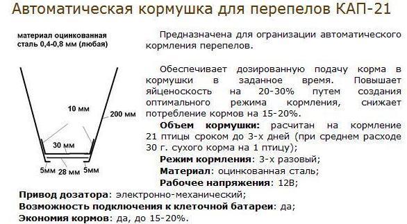 kormushka2.jpg