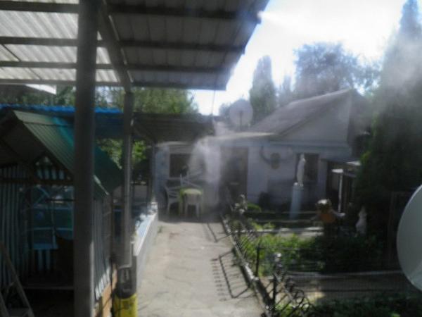 tuman1.jpg