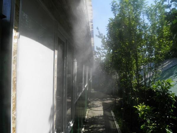 tuman2.jpg