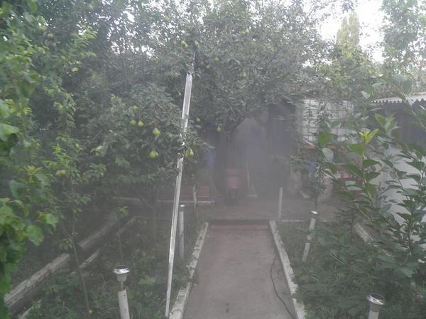 tuman6.jpg