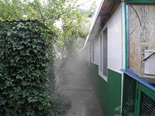 tuman8.jpg