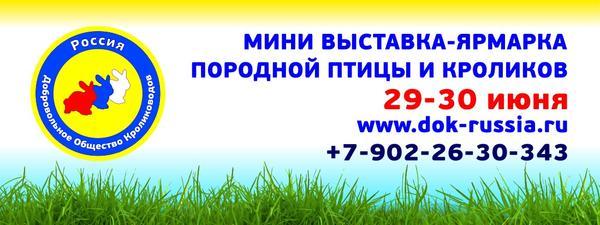 baner_dok_v_chelyabinsk.jpg