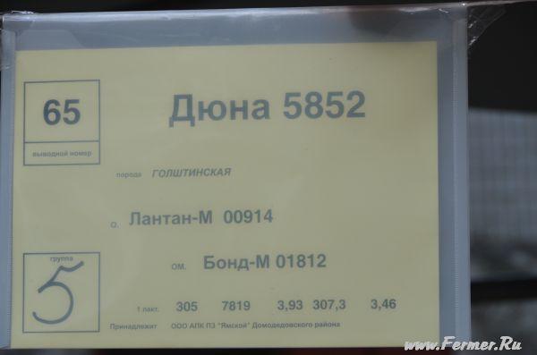 dsc_2603.jpg