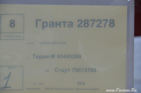 dsc_2615.jpg