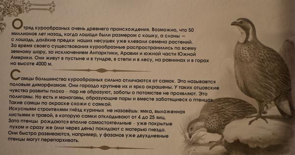 tablichka1.jpg