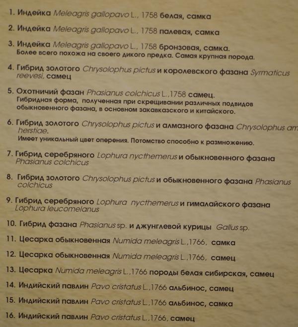 tablichka11.jpg