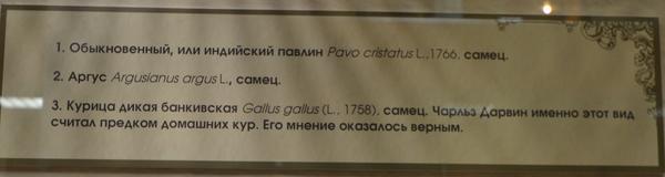 tablichka8.jpg