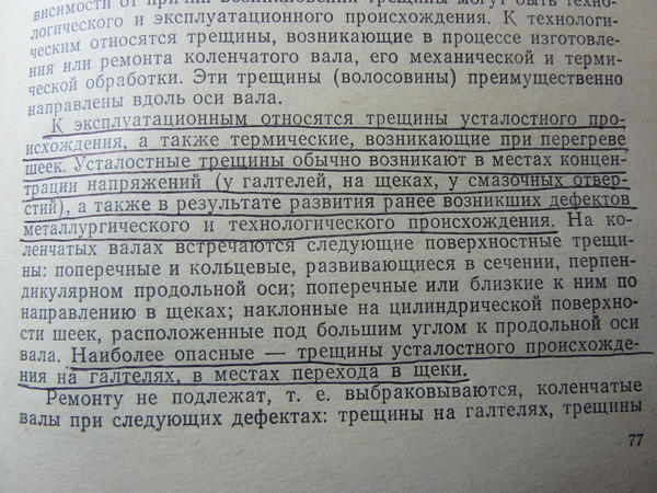 p1010329.jpg