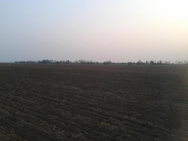 готовое поле