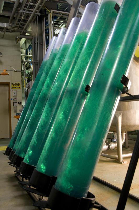 alltech-winchester-algae-skid-099.jpg