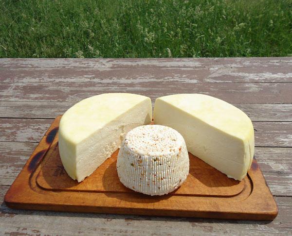 cheese7.jpg
