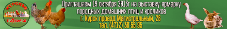 banner_kursk_2013.png
