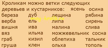 vetotchny-korm-dlya-krolikov.jpg